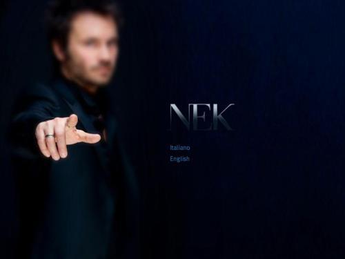 NEK 04 website